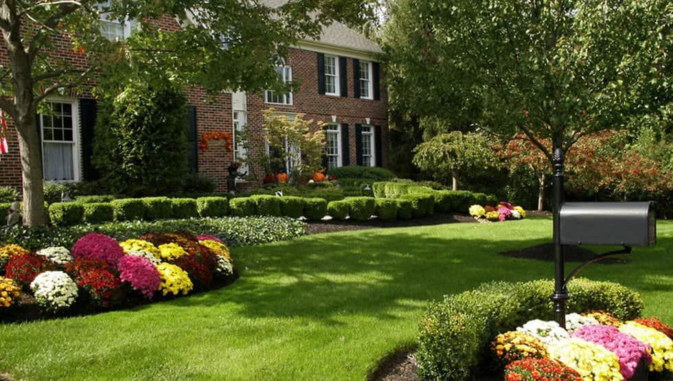 Decatur lawn care project