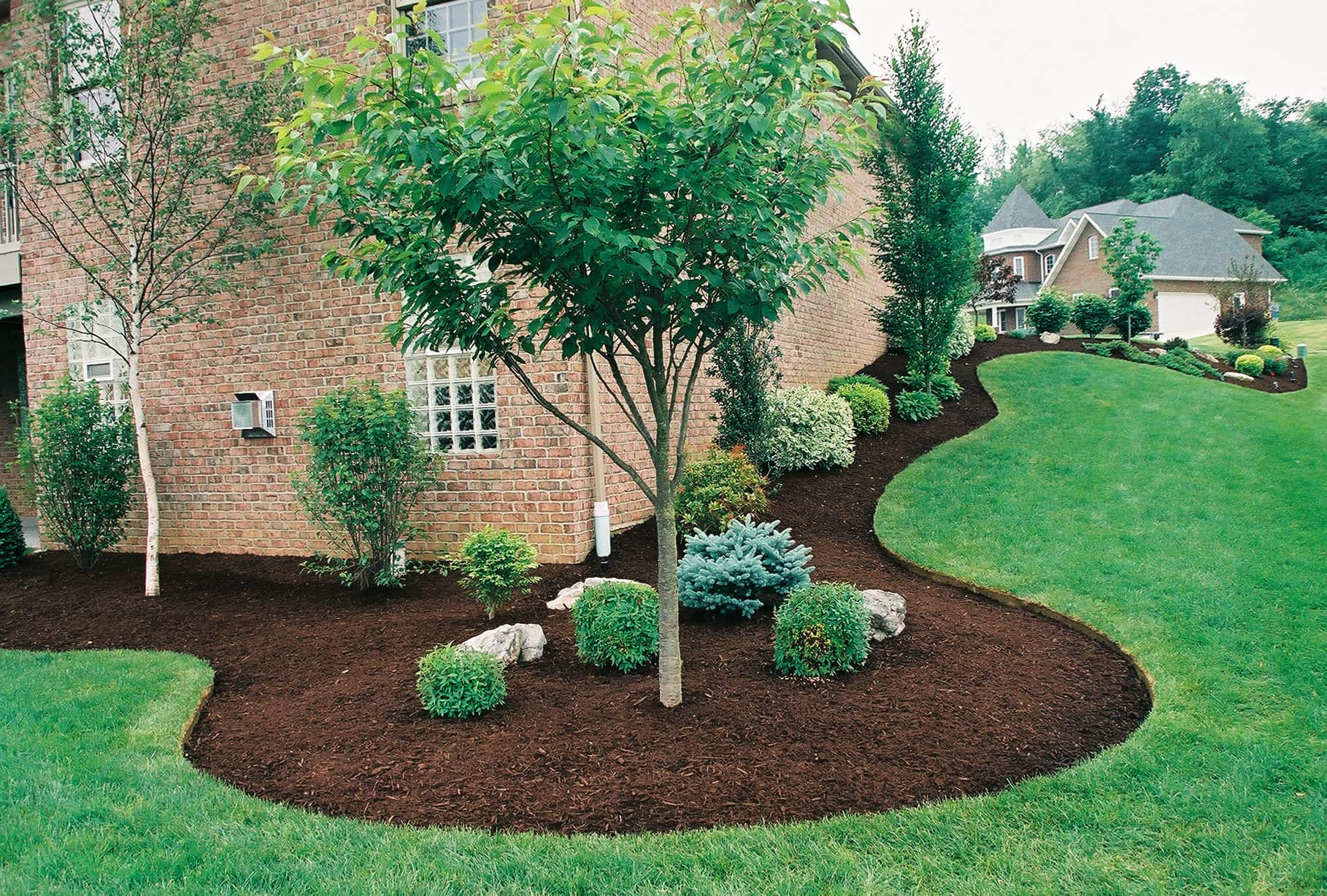 Johns Creek lawn care project